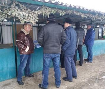 Контроль за продажем продуктів свинарства - Любашівка - 2