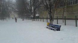 чудова зима - Роздільна