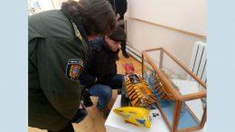 Экскурсия в музей - Белгород-Днестровский