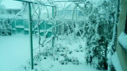 Захаровку засыпало снегом