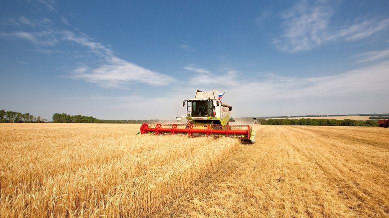 збір урожаю ранніх зернових та зернобобових культур