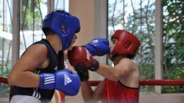 чемпионат Одесской области по боксу