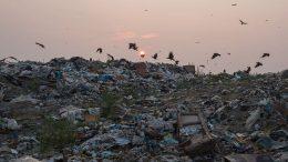 сміттєзвалища