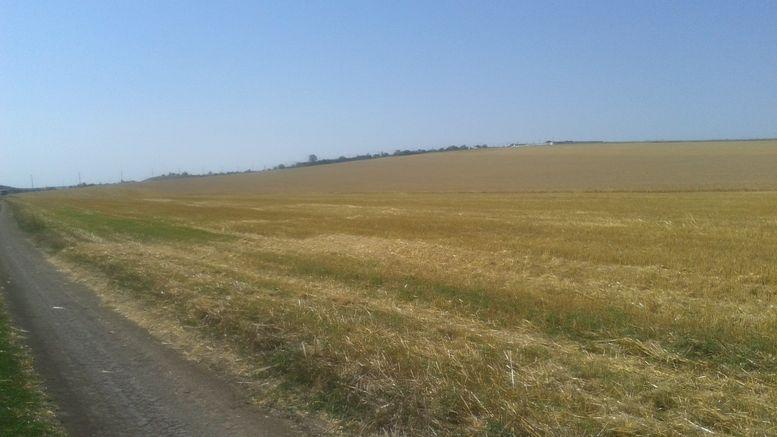 ринок землі сільськогосподарського призначення