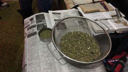 наркотики - марихуана - Измаильский район