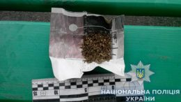 наркотики - марихуана - Измаил - полиция
