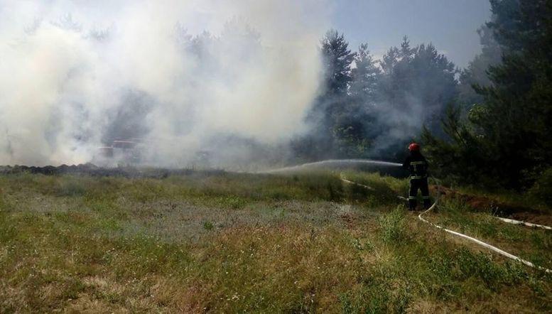 ліквідація пожежі - тренування - Балтське лісництво - 1