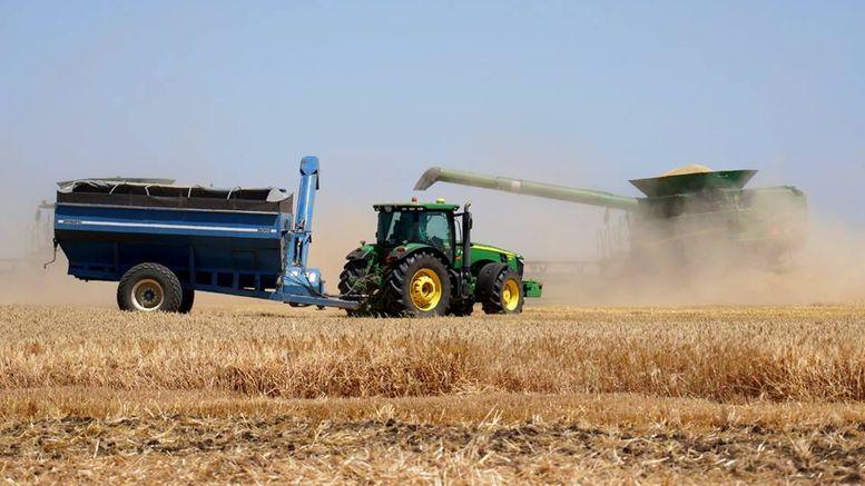 Врожай ранніх зернових колосових та зернобобових культур - Одеська область